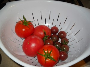 Yes, we have some tomatoes