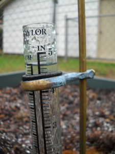 4.6 inches since y'day morning, added to the 2.4 that fell last week
