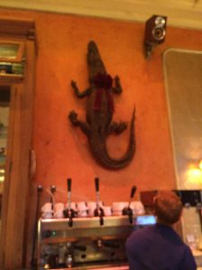 Gitane's alligator
