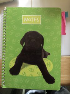 puppy notebook